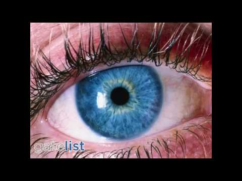20/20 Optometry of Silicon Valley - Excellent Care - San Jose CA 95131