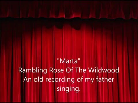 Marta - Rambling Rose of the Wildwood