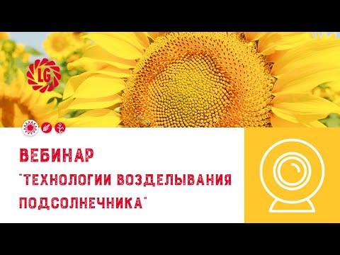 Вопрос: От чего зависит морозостойкость растений Какие факторы влияют на это?
