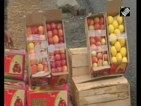 India News (19 Feb, 2018) - Apple growers relieved to see fresh snow in India's Jammu and Kashmir