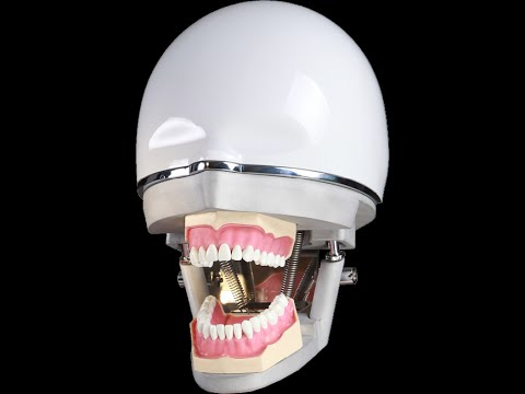 phantom head & dental phantom simulation head & phantom simulator unit and workbenches