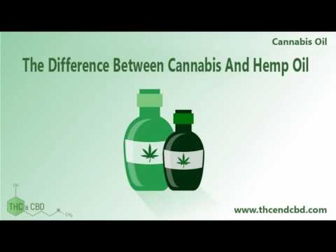 Is Hemp Oil And Cannabis Oil The Same Thing Review
