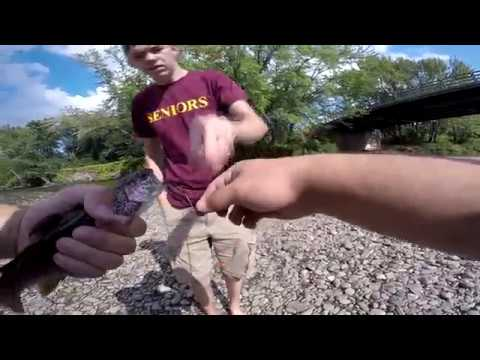 Catching NATIVE New Hampshire TROUT! (Up North: Part 1)