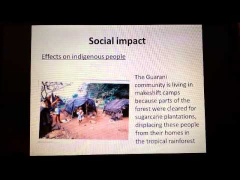 the economic and social impacts of At ramboll management consulting we create solutions with high social and economic impact in society.