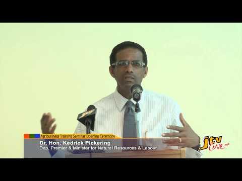 REMARKS BY DR. HON. KEDRICK PICKERING - AGRIBUSINESS TRAINING SEMINAR OPENING CEREMONY - 15 APRIL 2013