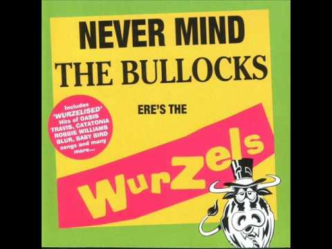 The Wurzels - Rock DJ