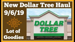 New Dollar Tree Haul 🤑 9/6/19 New Finds