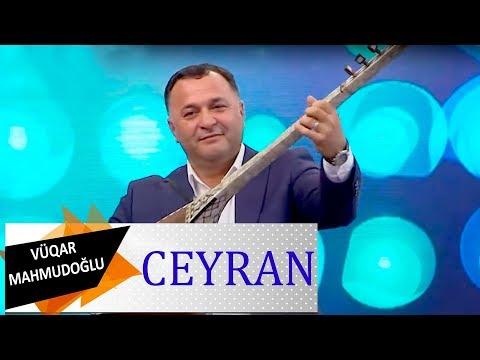 Asiq Vuqar Mahmudoglu Ceyran