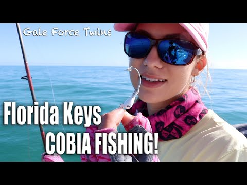 COBIA FISHING IN THE FLORIDA KEYS - How To Catch Cobia | Gale Force Twins