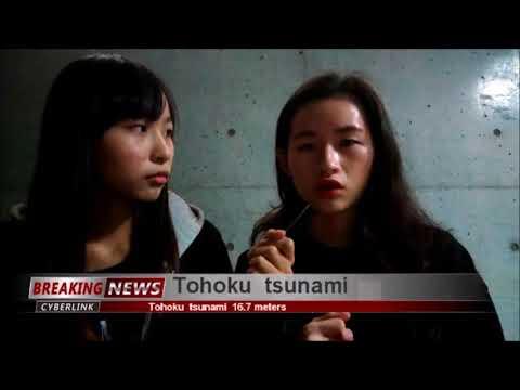 Tohoku earthquake and tsunami Japan 2011