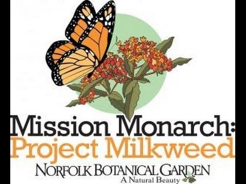 Mission Monarch At Botanical Garden
