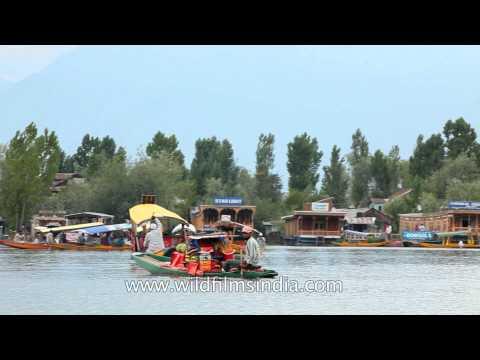 Shikara ride on the famous Dal Lake, Srinagar