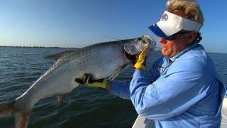 Crystal River Fishing For Tarpon | Fish Jumps in the Boat Fishing Fail