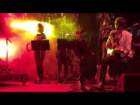 Spiritualized - I Think I'm in Love  Live at Desert Daze 2017