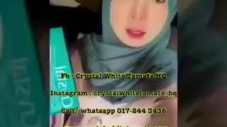 Crystal White Tomato - New Teknologi (Tomato Putih)