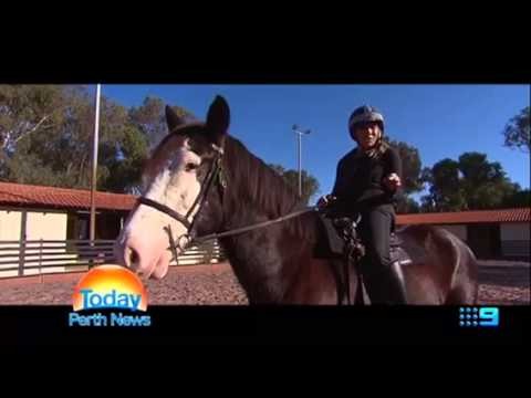 WA Police Mounted Section on 9 News Perth