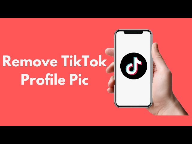 How To Remove Tiktok Profile Pic Android Iphone Youtube