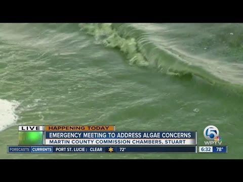 Algae prompts emergency meeting in Stuart