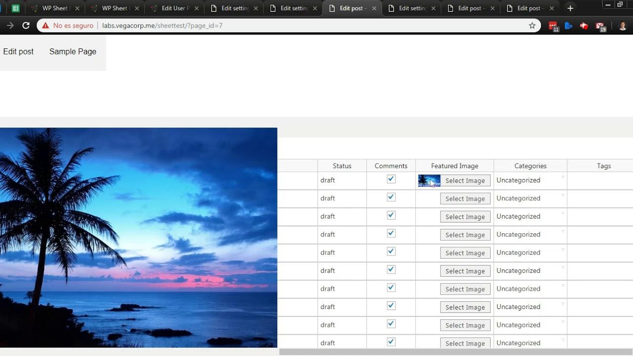 Simple Frontend Editor for WordPress - Free WordPress Plugin Demo