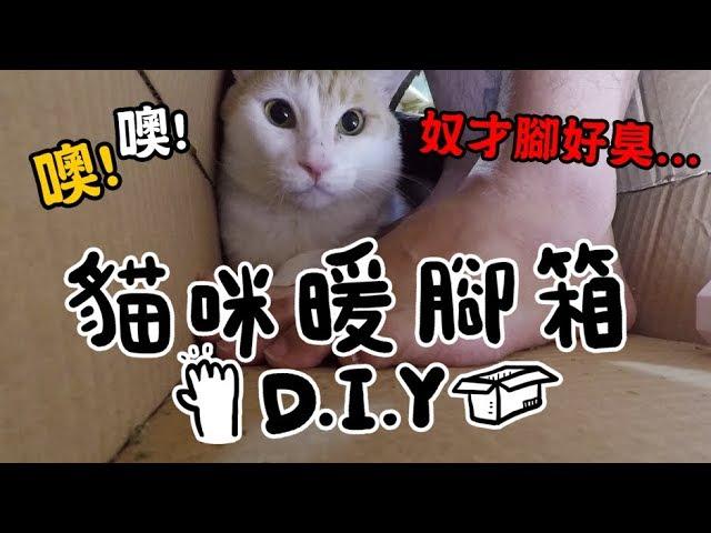 黃阿瑪的後宮生活-diy貓咪暖腳箱-來互相取暖吧