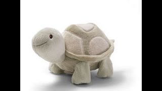 JumpStart Toys Crawl With Me Turtle Video Front View