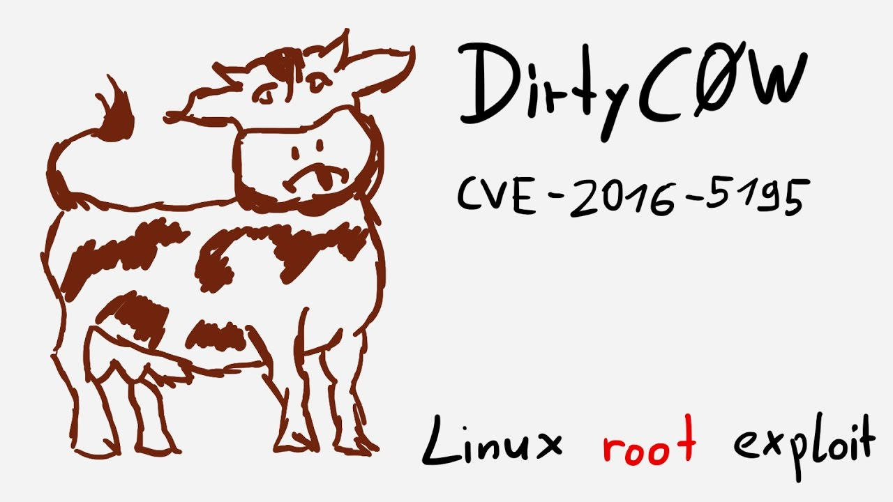 Dirty COW Vulnerability: Everything You Need to Know to Stay
