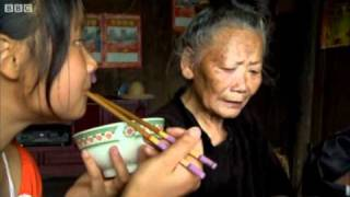 Rice-growing culture - Wild China - BBC