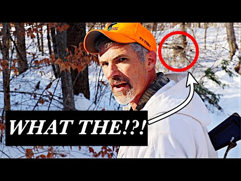 WE DON'T NORMALLY DO THAT! 🦌(+ Hunting Frustrations)