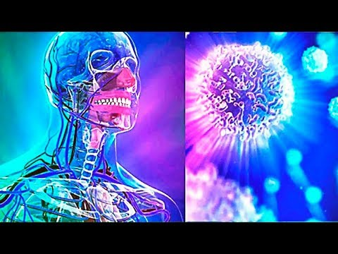Scientists Discover How to Boost The Immune System in 3 Days!