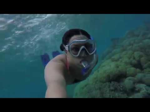 palau | travel diary 02 | exploring the coral reefs
