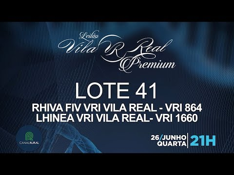 LOTE 41 (VRI 864/VRI 1660)