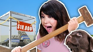 $10000 if We Break the UNBREAKABLE BOX to Rescue Animals (We Used Magic!)