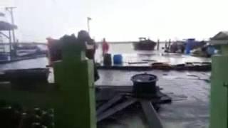 919五条港潮汐大水災