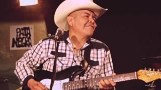 """Palomazo Pata Negra Rumbo al VL13- Tex Tex - """"Las vacas"""""""