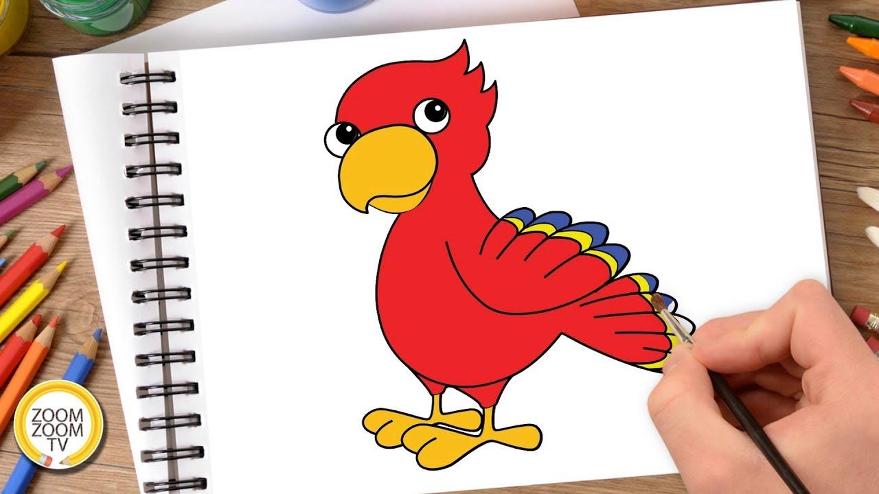Hướng dẫn cách vẽ CON VẸT, Tô màu CON VẸT – How to draw a parrot
