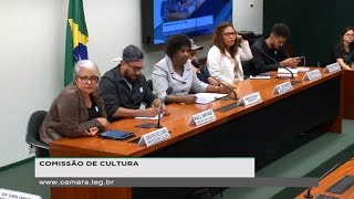 Cultura - Audiencia Publica - Criminalizacao do Funk - 25042019 - 1004