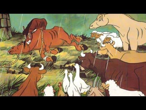 Top 10 Notes: Animal Farm