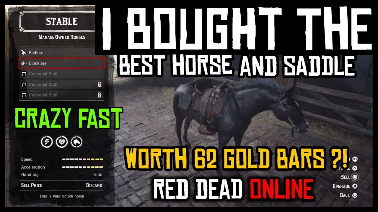 I BOUGHT AND TESTED THE BEST HORSE AND SADDLE IN RED DEAD ONLINE | WAS IT  WORTH 62 GOLD BARS ?!