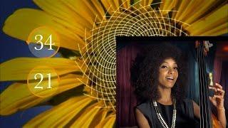 Великая Тайна Математики (2016). Документальный фильм NOVA(Этот фильм - настоящий деликатес для интеллекта. Вы когда-нибудь задумывались, является ли математика чело..., 2016-07-30T13:34:09.000Z)
