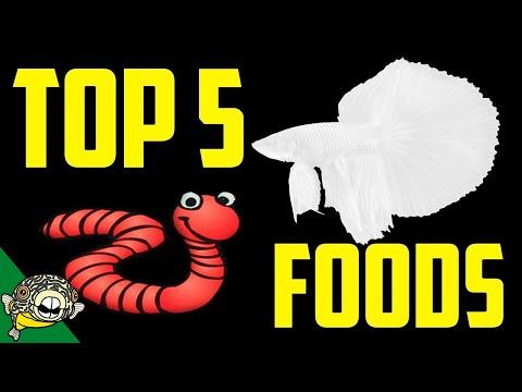 Top 5 Betta Fish Foods