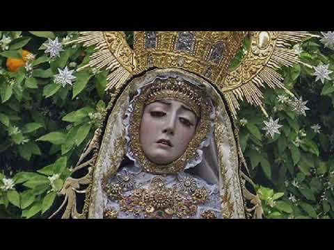 Procesión virtual del Santísimo Cristo de la Clemencia y Nuestra Señora de los Dolores