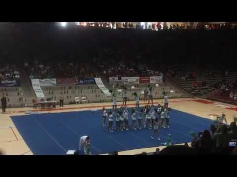 Albuquerque Bulldogs Cheer State 2014