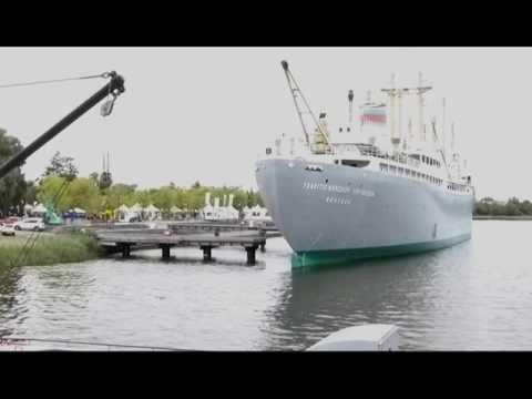 Meinungsäußerungen zum Maritimen Rat Rostock