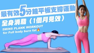 5MINS PLANK WORKOUT FOR FULL BODY BURN FAT