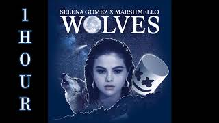 selena gomez ft. marshmello - wolves (1 hour version)