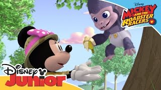 Mickey and the Roadster Racers - The Happy Helpers Rescue a Gorilla | Official Disney Junior Africa