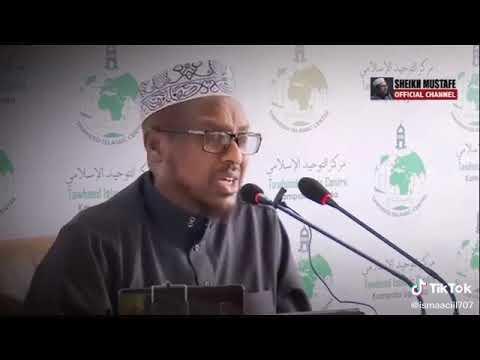 Sheikh mustafa haji ismail