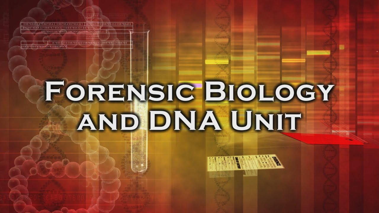 forensic biology Apply now nij is accepting applications under the fiscal year 2018 solicitation research and development in forensic science for criminal justice purposes update: applications now are due april 24, 2018 forensic science is the application of sciences such as physics, chemistry, biology, computer.