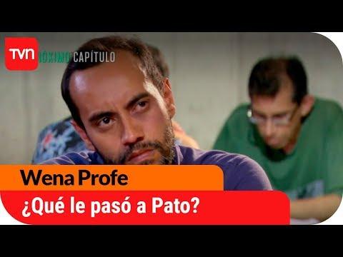 ¿Qué le pasó a Pato?   Avance Wena Profe - E129