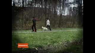 Мазурок. ВІДЕО 1+1(Інтервю дружини Мазурка: він не вбивав, на нього повісили вбивство, а потім інсценували самогубство., 2012-11-28T13:52:21.000Z)